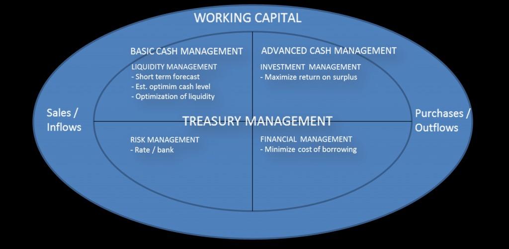 Treasury Management Working Capital